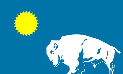 sdflag2